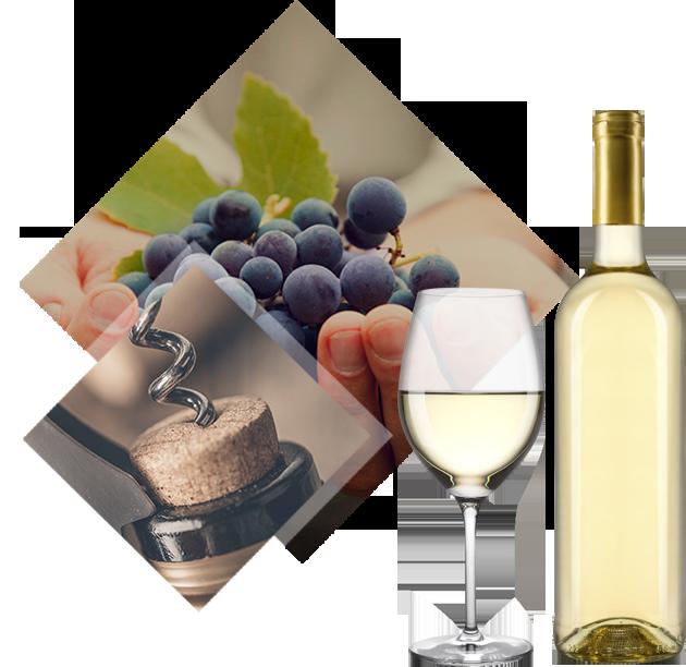 vino blanco en divino cultivo