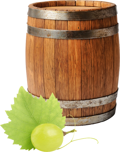 hoja vid uva y barril vino divino cultivo
